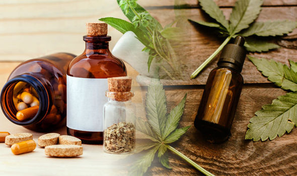 CBD oil and many other CBD-based products
